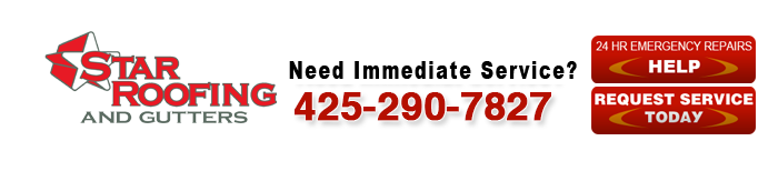 Roofing Contractor in Seattle